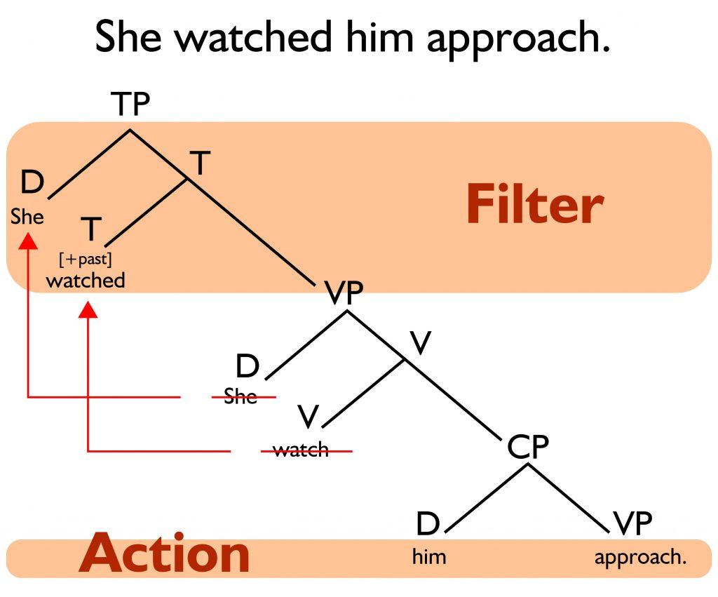 Filter verbs in a minimalist syntax tree